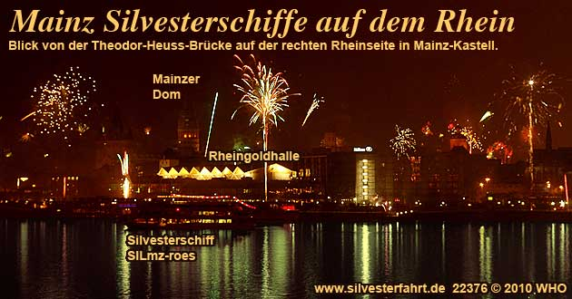 Silvester single party mainz